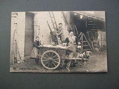 Vintage B/W Postcard Laitiere Flamande Lady Milk Dog Cart Boy Up Ladder Belgium
