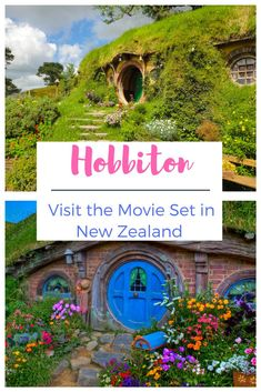 Hobbiton really exists and I want to live there! See why you must visit this colorful garden movie set in New Zealand! Take the Hobbiton Village Tour from Auckland, NZ. Travel tips and Things to do in New Zealand #hobbiton #newzealand #flowers Brisbane, Melbourne, Sydney, Travel Guides, Travel Tips, Travel Destinations, Village Tours, New Zealand Holidays, New Zealand Travel Guide
