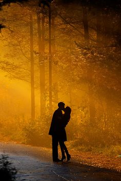 fall engagement pics, I love the silhouette and the golden tones from the sun and the leaves. Fall Engagement, Engagement Pictures, Wedding Pictures, Engagement Shots, Engagement Ideas, Silhouettes, The Kiss, Good Dates, Mellow Yellow