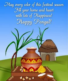 {Best*} Happy Pongal Wishes Images Quotes Pictures Photos in Tamil Christmas Messages For Friends, Christmas Greetings, Pongal Festival Images, Happy Pongal Wishes, Makar Sankranti Image, Tamil Greetings, Good Morning Image Quotes, Happy New Year Pictures, Holi Special
