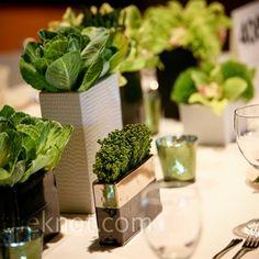 Modern Wedding Flower Centerpiece | Wedding Flowers