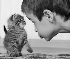 #cute kitty and kid
