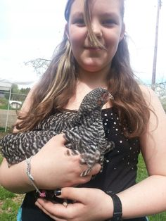 Want to hold a chicken at McMillan Farms? Farms, Chicken, Animals, Homesteads, Animales, Animaux, Animal, Animais, Cubs