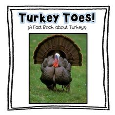 """This """"Turkey Toes"""" fact book freebie is an informational book about turkeys. This goes along with the """"My Turkey Fact Book"""" that is included in my """"Turkey Toes"""" Thanksgiving unit on TPT.  Be sure to check it out at the following link:Turkey Toes!  A Thanksgiving UnitBe sure to click on the green star at the top of the page to follow me!"""