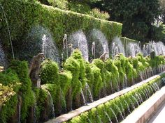 Tivoli Gardens in Italy (east of Rome). This garden has so many water fountains and not operating by pumps but all water pressure.