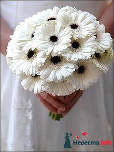 White gerbera daisy bouquet - герминии #whitebouquet #gerberadaisybouquet