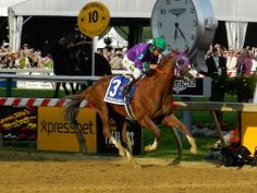 California Chrome wins the @Preakness Stakes!