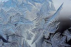 ice cool nature - Google Search
