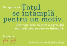 citat andy szekely 01