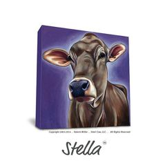 Hi, I'm Stella, I'm a little sweet and a little sassy. I am quite taken by fancy buttons and old movies. I would like to go hang gliding...
