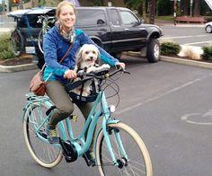 Image result for bike dog seat
