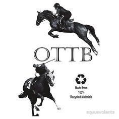 ottb | equusvolante › Portfolio › OTTB