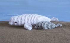 baby beluga in the deep blue sea...