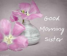 Looking for Good Morning Wishes for Sister? Start your day by sending these beautiful Images, Pictures, Quotes, Messages and Greetings to your Sis with Love. Good Morning Sister Images, Good Night Sister, Good Morning Picture, Good Morning Friends, Good Morning Greetings, Good Morning Good Night, Morning Pictures, Good Morning Wishes, Good Morning Quotes