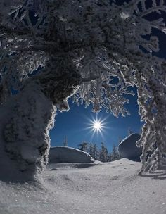 Beautiful Winter and Snow Landscape Pictures - Snow – Winter - Winter Szenen, I Love Winter, Winter Magic, Winter Christmas, Winter Night, Merry Christmas, Winter Photography, Nature Photography, Moonlight Photography