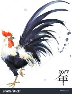 Rooster. Rooster Year. Chinese New Year Of The Rooster. Watercolor Illustration. Rooster Chinese Painting. New Year Card. - 417399124 : Shutterstock