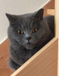 Mina ❤️