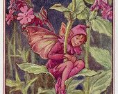 Red Campion Flower Fairy Vintage Print, c.1950 Cicely Mary Barker Book Plate Illustration