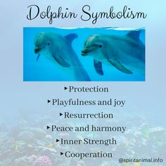 The Dolphin Spirit Animal The dolphin spirit animal represents harmony and balance. Dolphins are both highly intelligent and closely in tune with their instincts, striking a balance between the two states. Dolphins are also a symbol of Dolphin Quotes, Dolphin Images, Dolphin Art, Ocean Quotes, Animal Meanings, Animal Symbolism, Animal Spirit Guides, Your Spirit Animal, Orcas