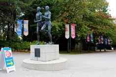 Sunday Market   Hastings Park   Vancouver East Village, Farmers Market, Vancouver, Woodland, Places To Go, Sunrise, Sunday, Marketing, Park