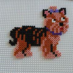 Yorkshire terrier hama perler beads by thekimandre