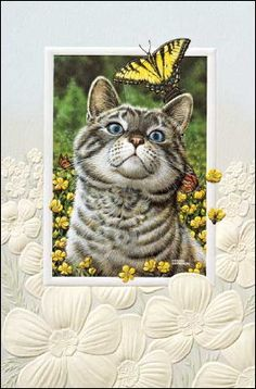 Tree Free greeting blank card /'Trapped/' cat kitten mouse theme matched envelope