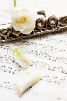 Pearl should play the flute