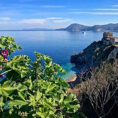Buongiorno dalle viste a #portoferraio #elba. #napoleone si trattava bene . Foto di @damianocamera. Continuate a taggare le vostre foto con #isoladelbaapp il tag delle vostre vacanze all'#isoladelba. Visita http://ift.tt/1NHxzN3