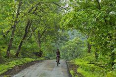 Ride into Paradise.. #Rainforest #Mahal #Dang #Gujarat #Natureindia