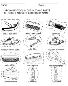 Grooming tools - cut & paste  (page 8)    The rest of the pages of this workbook can be found on my board. Thanks for sharing my pins.     http://www.pinterest.com/HorseInterests/illustrations-handouts/