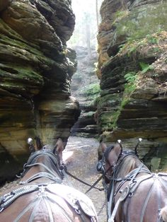 Lost Canyon Tours (Wisconsin Dells, WI): Address, Phone Number, Attraction Reviews - TripAdvisor