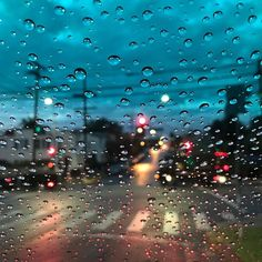 Echo Park. Free Video Background, Poster Background Design, Rain Days, Life After Death, Through The Window, Echo Park, Tumblr Wallpaper, Aesthetic Pictures, Bunt