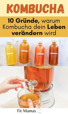 Kombucha Scoby, Brewing Recipes, Low Porosity Hair Products, Fermented Foods, Non Alcoholic Drinks, How To Make Homemade, Recipes For Beginners, Street Food, Clean Eating