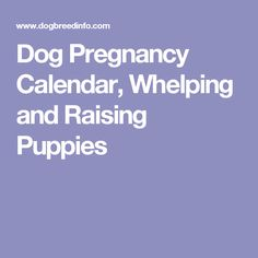 Dog Pregnancy Calendar, Whelping and Raising Puppies