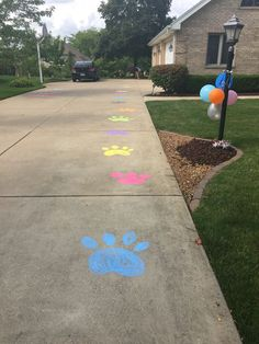 Paw prints for beanie boo adoption party - Pet Supplies Dog Themed Parties, Puppy Birthday Parties, Puppy Party, Cat Birthday, Animal Birthday, Cat Party, Birthday Party Themes, Dog Parties, Birthday Ideas