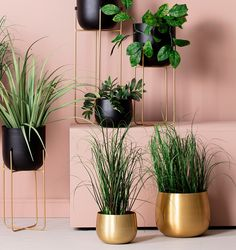 #Blomsterpotte #lina #stor #Interiør #kremmerhuset Decor, Room, Interior, My Room, Vaser, Home Decor, Room Inspiration, Inspiration, Room Furniture