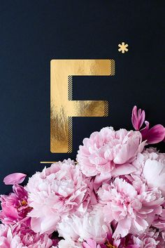 Flower Alphabet F by neon* fotografie as Poster in Standard Frame Flower Alphabet, Alphabet Print, Photo Deco, Protest Posters, Neon, Image Notes, Any Images, Typography Poster, Christian Wallpaper