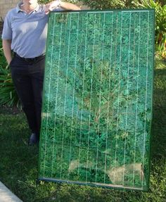 Colored Solar Panels that are nearly indestructible and actually blend in with the background.