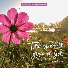 As each one has received a gift, minister it to one another, as good stewards of the manifold grace of God. 1 Peter 4:10 (NKJV)