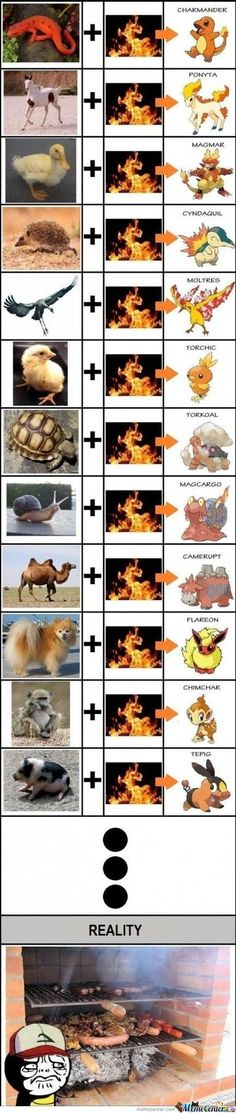 Some Where, In Another Planet Or Galaxy, There Has To Be A World Of Real Pokemon