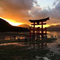 Миядзимские закаты - с Мидокоро!   #осеннее  #Япония #миядзима #клены #закат #осень #фототур #момидзи #Хиросима #тенитени #светсвет #мидокоро