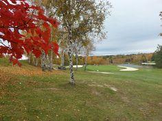 Lively Golf Club, Sudbury