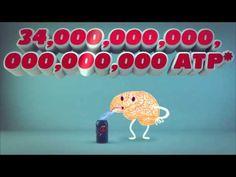 Video: ¿Qué porcentaje de nuestro cerebro usamos? - Actualidad en Psicología