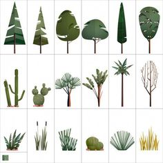Vector trees outdoor plants For more scene Collage Architecture, Architecture Graphics, Architecture Illustrations, Architecture Drawings, Landscape Architecture, Illustration Vector, Plant Illustration, Architectural Trees, Tree Photoshop