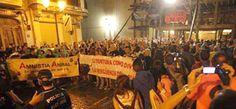 Notiferias Toros en Venezuela y el Mundo: Acosados