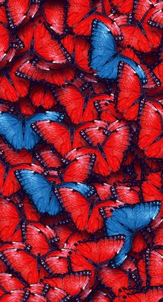 butterfly, background, and wallpaper image Red Wallpaper, Butterfly Wallpaper, Tumblr Wallpaper, Screen Wallpaper, Butterfly Background, Abstract Backgrounds, Wallpaper Backgrounds, Iphone Wallpaper, Witcher Wallpaper