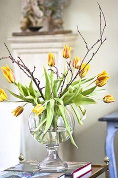 Tulipanes en copa