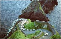 Ireland  Green Hills with adorable lambies, need I say more?