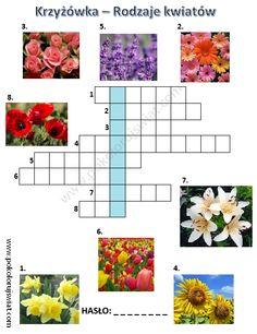 Krzyżówka- rodzaje kwiatów   Pokoloruj Świat Crossword, Asd, Education, Crossword Puzzles, Teaching, Onderwijs, Studying