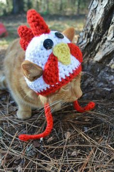 Old MacDonald had a... rooster cat?  Rooster hat for cats by iheartneedlework. Cats in hats.